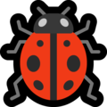 Lady Beetle on Microsoft Windows 10 May 2019 Update