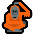 Orangutan on Microsoft Windows 10 May 2019 Update