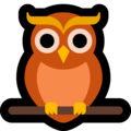 Owl on Microsoft Windows 10 May 2019 Update