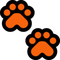 Paw Prints on Microsoft Windows 10 May 2019 Update