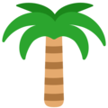 Palm Tree on Mozilla Firefox OS 2.5