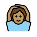 Person Gesturing OK: Medium Skin Tone on OpenMoji 12.0