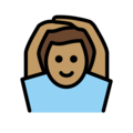 Man Gesturing OK: Medium Skin Tone on OpenMoji 12.0