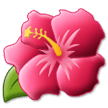 Hibiscus on Samsung Experience 9.5