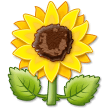 Sunflower on Samsung Experience 9.5