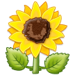 Sunflower on Samsung One UI 1.0