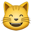 Grinning Cat with Smiling Eyes on Samsung One UI 1.5