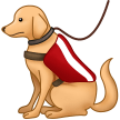 Service Dog on Samsung One UI 2.5