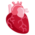 Anatomical Heart on Twitter Twemoji 13.0