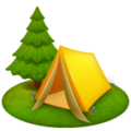 Camping on WhatsApp 2.19.244
