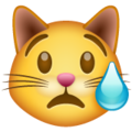 Crying Cat Face on WhatsApp 2.19.244