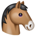 Horse Face on WhatsApp 2.19.244