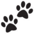 Paw Prints on WhatsApp 2.19.244