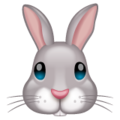 Rabbit Face on WhatsApp 2.19.244