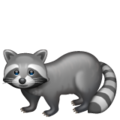 Raccoon on WhatsApp 2.19.244