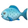 Fish on WhatsApp 2.19.352