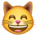Grinning Cat with Smiling Eyes on WhatsApp 2.19.352