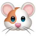 Hamster on WhatsApp 2.19.352