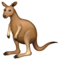 Kangaroo on WhatsApp 2.19.352