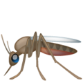 Mosquito on WhatsApp 2.19.352