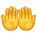 Palms Up Together on WhatsApp 2.19.352