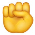 Raised Fist on WhatsApp 2.19.352