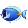 Tropical Fish on WhatsApp 2.19.352
