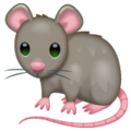 Rat on WhatsApp 2.20.198.15