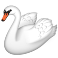 Swan on WhatsApp 2.20.198.15