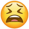 Tired Face on WhatsApp 2.20.198.15