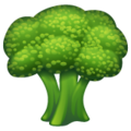 Broccoli on WhatsApp 2.20.206.24