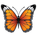 Butterfly on WhatsApp 2.20.206.24