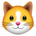 Cat Face on WhatsApp 2.20.206.24