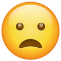 Frowning Face with Open Mouth on WhatsApp 2.20.206.24