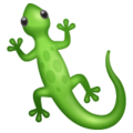 Lizard on WhatsApp 2.20.206.24