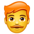 Man: Red Hair on WhatsApp 2.20.206.24
