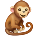 Monkey on WhatsApp 2.20.206.24