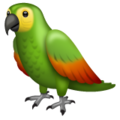 Parrot on WhatsApp 2.20.206.24
