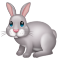 Rabbit on WhatsApp 2.20.206.24