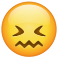 Confounded Face on WhatsApp 2.21.16.20
