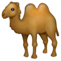 Two-Hump Camel on WhatsApp 2.21.16.20