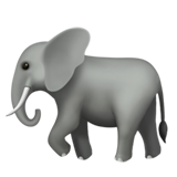 Elephant on Apple iOS 11.1