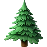 Evergreen Tree on Apple iOS 11.1