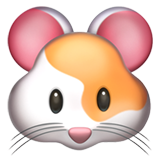 Hamster on Apple iOS 11.1