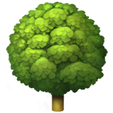 Deciduous Tree on Apple iOS 11.2