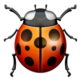 Lady Beetle on Apple iOS 11.2