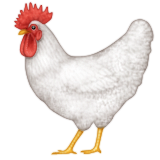 Rooster on Apple iOS 5.1