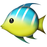 Tropical Fish on Apple iOS 11.3
