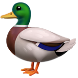 Duck on Apple iOS 12.1