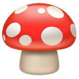 Mushroom on Apple iOS 12.1
